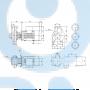 Моноблочный насос NB 40-315/318 AF2ABAQE - 97836780